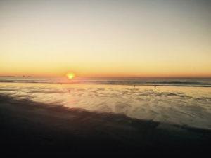 Port Aransas - Healing Therapies - Suzanne McCann